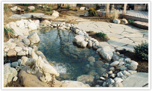 Photo of Backyard Water Feature